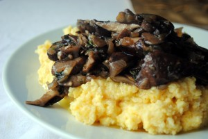 ragout mushroom polenta