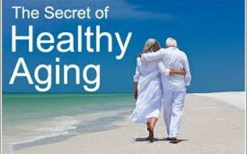 Good Diet Foods: Healthy Aging