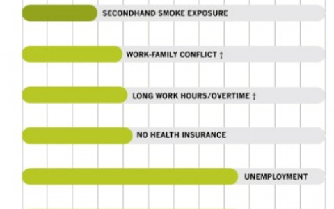 Top Stressors on Mortality