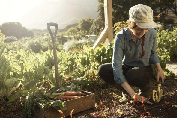 A girl spending time on gardening