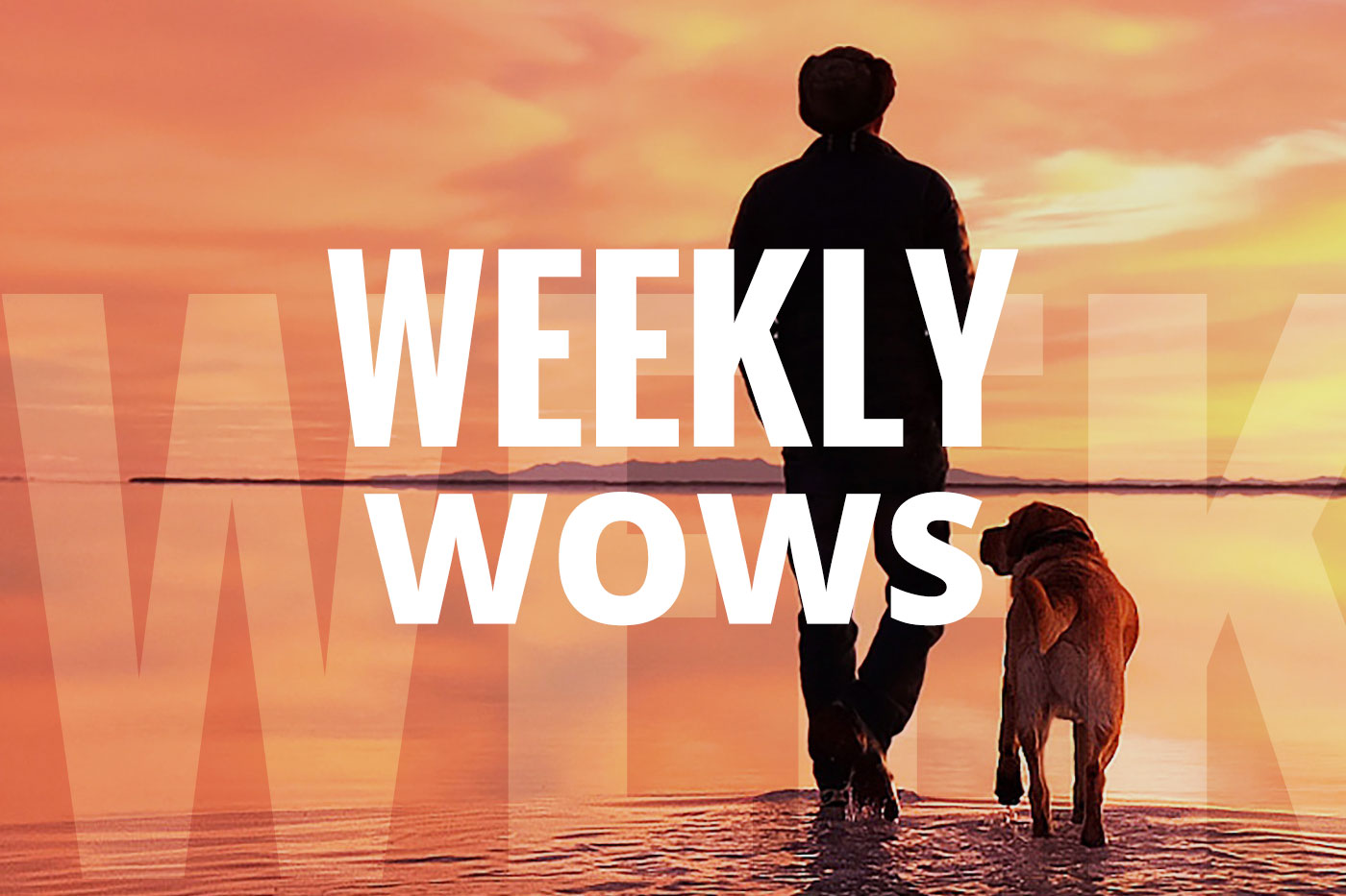Weekly Wows