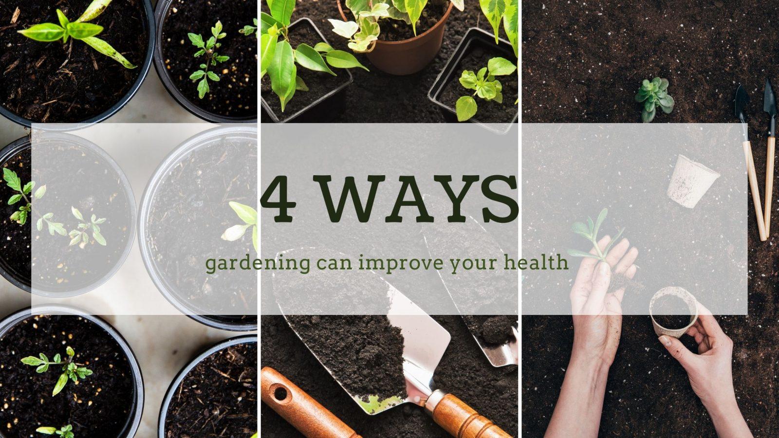 4 ways gardening improves your health